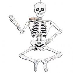 Squelette carton