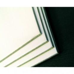 Carton 600g- 1 face blanche
