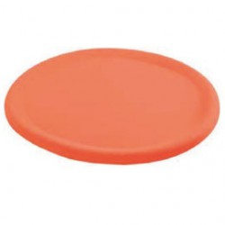 Frisbee géant