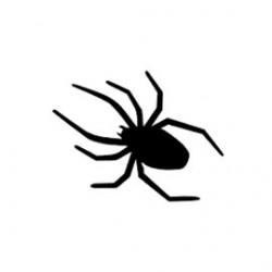 Paillettes Araignées